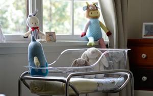 hospital grade bassinet